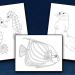 Aquatic Animals Coloring Pack