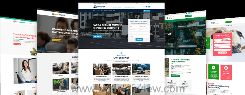 Web Agency Fortune Vol.4 Review