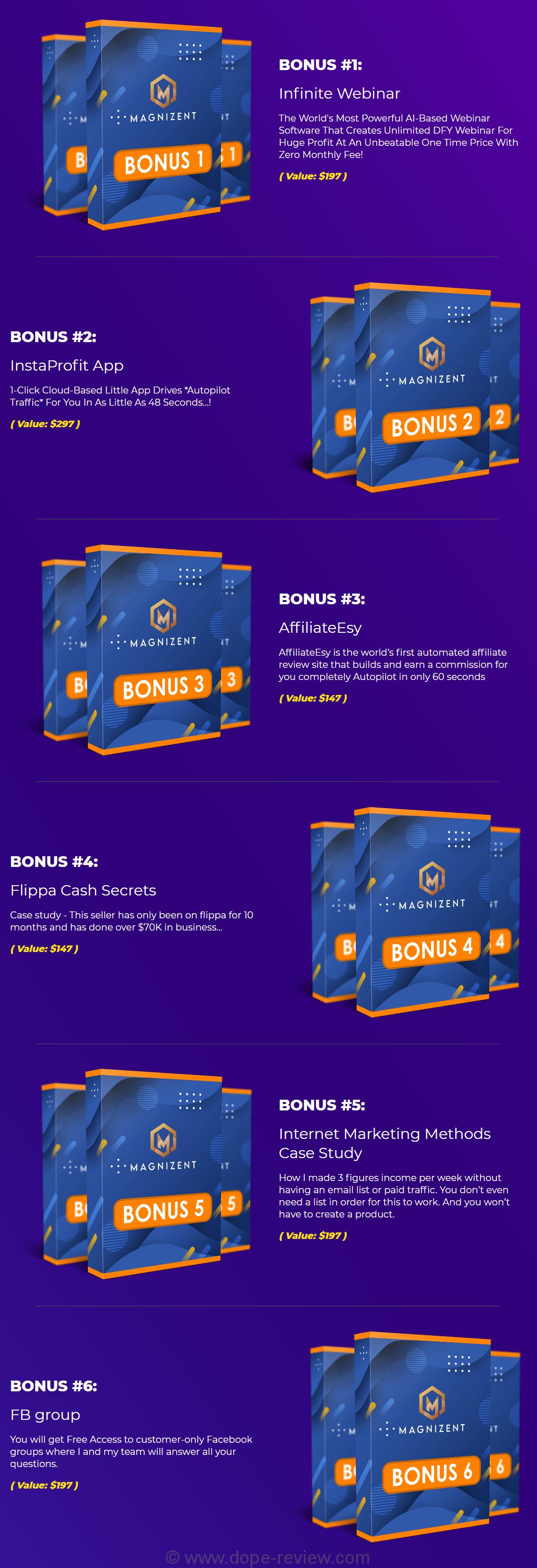 Magnizent Bonus